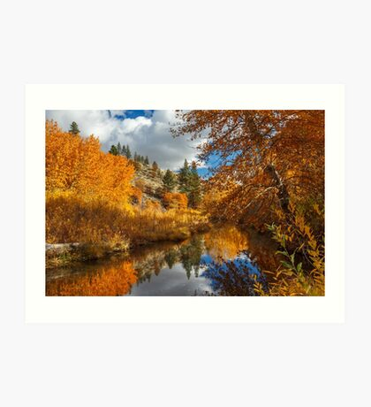 Susan River Reflections Art Print