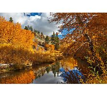 Susan River Reflections Photographic Print