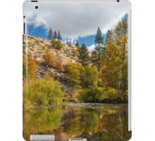 Susan River 10-25-12 iPad Case/Skin