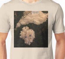 Bear's Beard Unisex T-Shirt