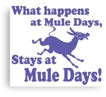 Mule Day Canvas Print