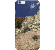 Springtime At Red Rock Canyon iPhone Case/Skin