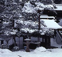 January in Kyoto, Japan by Maggie Hegarty