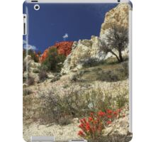 Red Flowers At Red Rock Canyon iPad Case/Skin