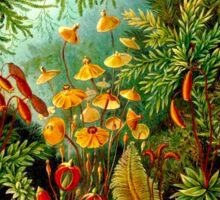 FLOWER GARDEN; Vintage Art Print Sticker