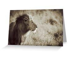Regal Pride - Masai Mara, Kenya Greeting Card