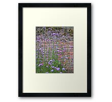 Purple Flower Background Framed Print