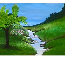 Creek Painting Photographic Print