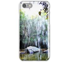 Behind the waterfall iPhone Case/Skin