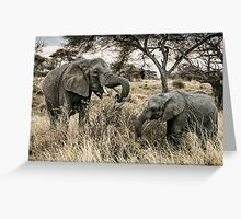 Elephant Buffet - Tarangire NP, Tanzania Greeting Card