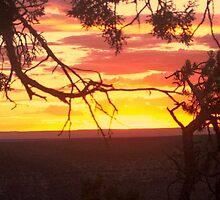 Sunset on the Canyon by artbycheyenne