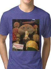 AM Friends! Tri-blend T-Shirt