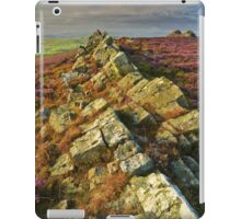To the Point iPad Case/Skin