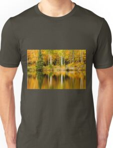 White Birch Trees Reflections in Autumn Unisex T-Shirt