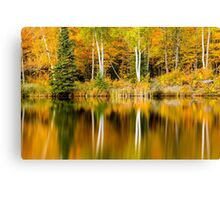 White Birch Trees Reflections in Autumn Canvas Print