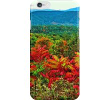 SUMAC, FOOTHILLS PARKWAY iPhone Case/Skin