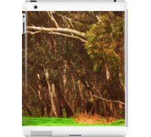 Beautiful Arches iPad Case/Skin