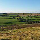 Hedleyhope Fell by Richard Winskill