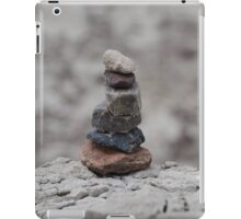 New Mexico Cairn iPad Case/Skin