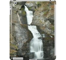 Raymondskill Color iPad Case/Skin