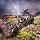 Abandoned Wreck. by Irene  Burdell
