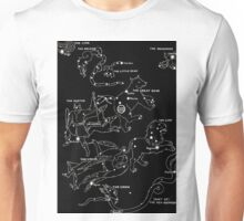 1920's Spring Constellation  Unisex T-Shirt