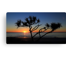Pandanas Sunrise Canvas Print