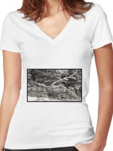 Tree Study 5 Women's Fitted V-Neck T-Shirt
