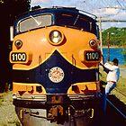 Cape Cod Railroad by njordphoto