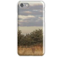 tree line  iPhone Case/Skin