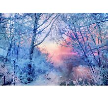 Winter evening Photographic Print