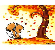 Fox in the Fall Photographic Print