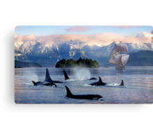 Sail With Sea Wolfs Metal Print