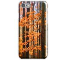 LONG MISTY DAYS (VIEW LARGE) iPhone Case/Skin