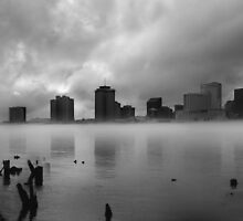 the Fog by MStyborski