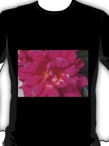roses in the garden T-Shirt