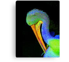 Another Pelican Partygoer Canvas Print