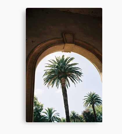 Palm Trees and Architecture Canvas Print