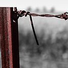 Rusty wire and post. by Jeanette Varcoe.