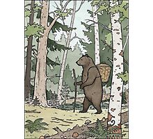 Bear in the Woods Photographic Print