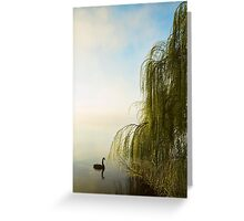 Lake Burley Griffin, Canberra  Greeting Card