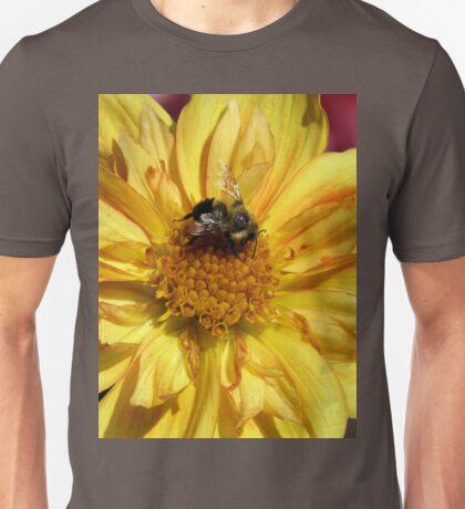 Autumn Pollenator Unisex T-Shirt