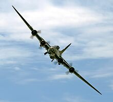 B-17 Flying Fortress Sally B by © Steve H Clark Photography
