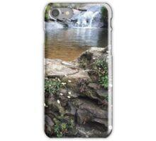 Bush waterfall iPhone Case/Skin