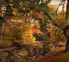 Autumn's Edge by Jessica Jenney