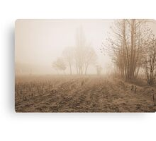 fields in the fog in winter Canvas Print