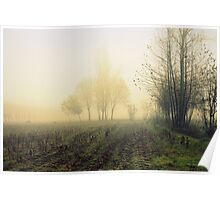 fields in the fog in winter Poster