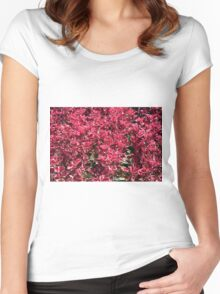 Texture with red flowers and leaves Women's Fitted Scoop T-Shirt