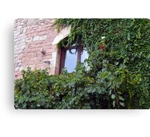 Window on a brick facade covered in leaves Canvas Print