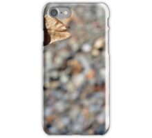 Autumn background in brown tones with dry leaf iPhone Case/Skin